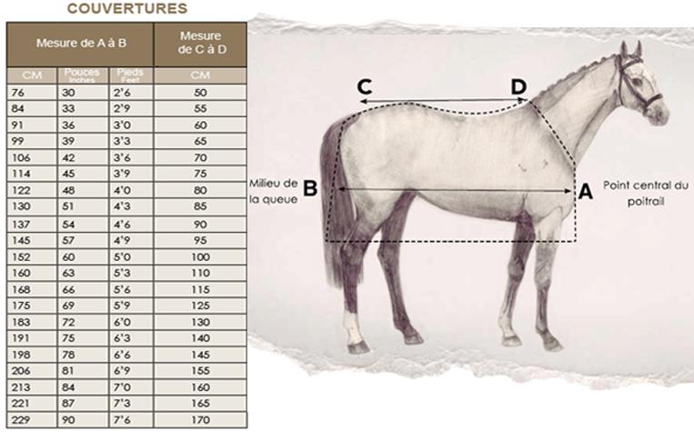 Guide des tailles couvertures chevaux